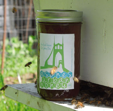 Jar of Asches Urban Honey in front of bee hive.